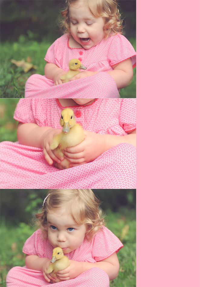 baby with ducklings photo