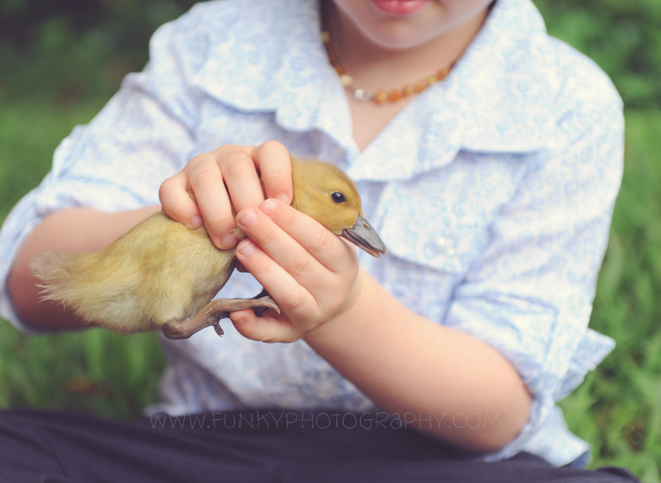 child holding a duckling for a photograph