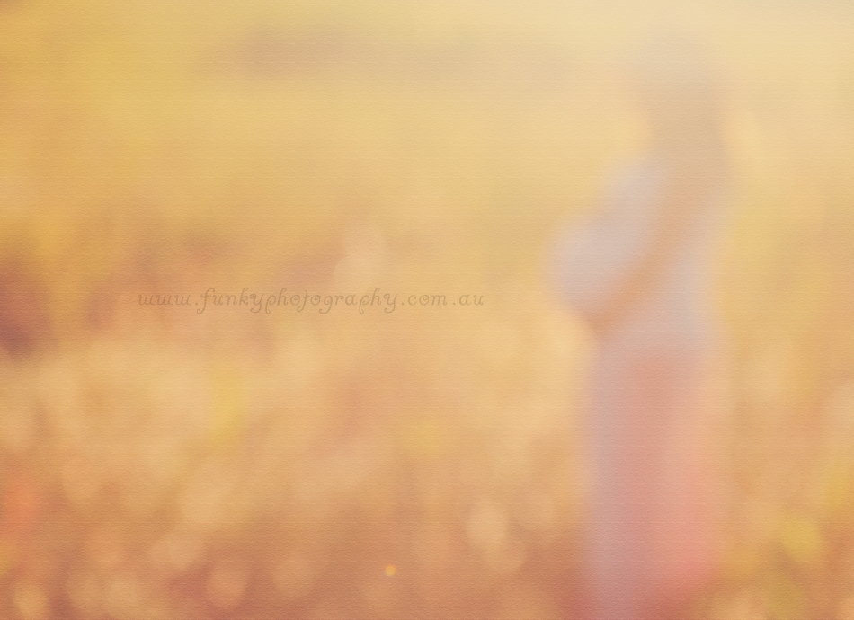 pregnant lady in a field at peregian beach photos and photography