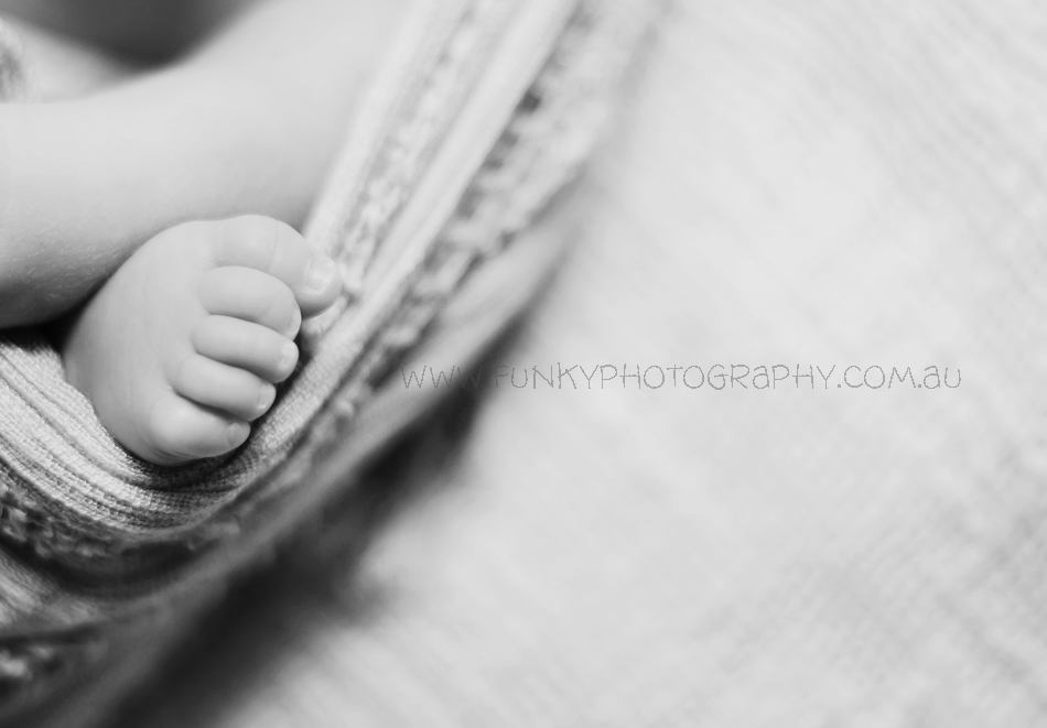 photograph of baby toes in black and white