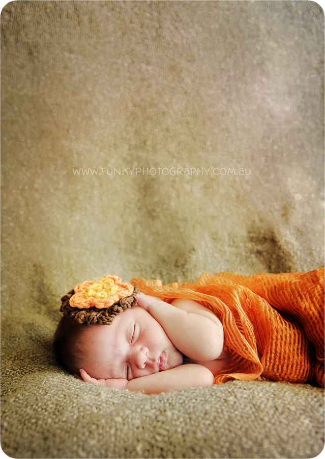 nambour baby photographers