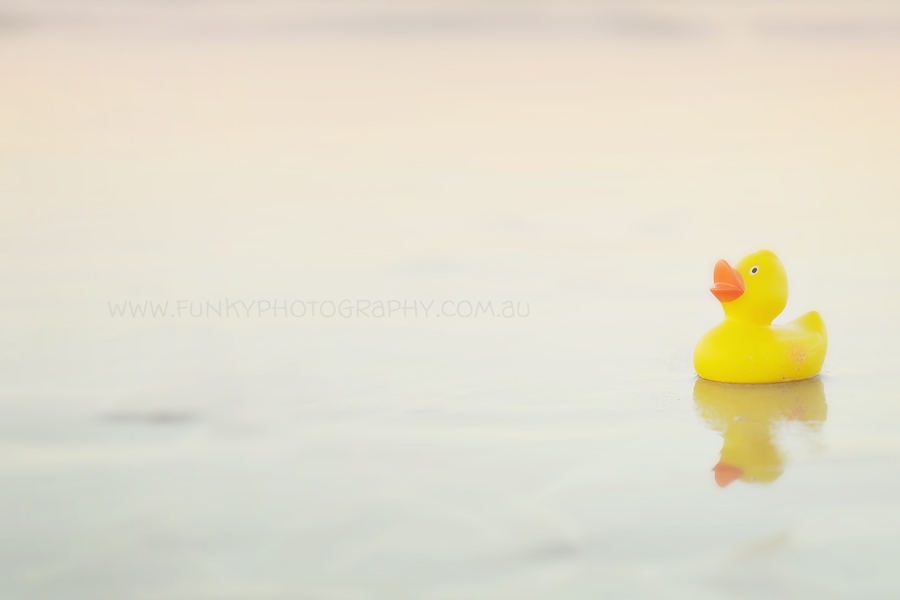 yellow rubber bath duck on the beach at noosa heads