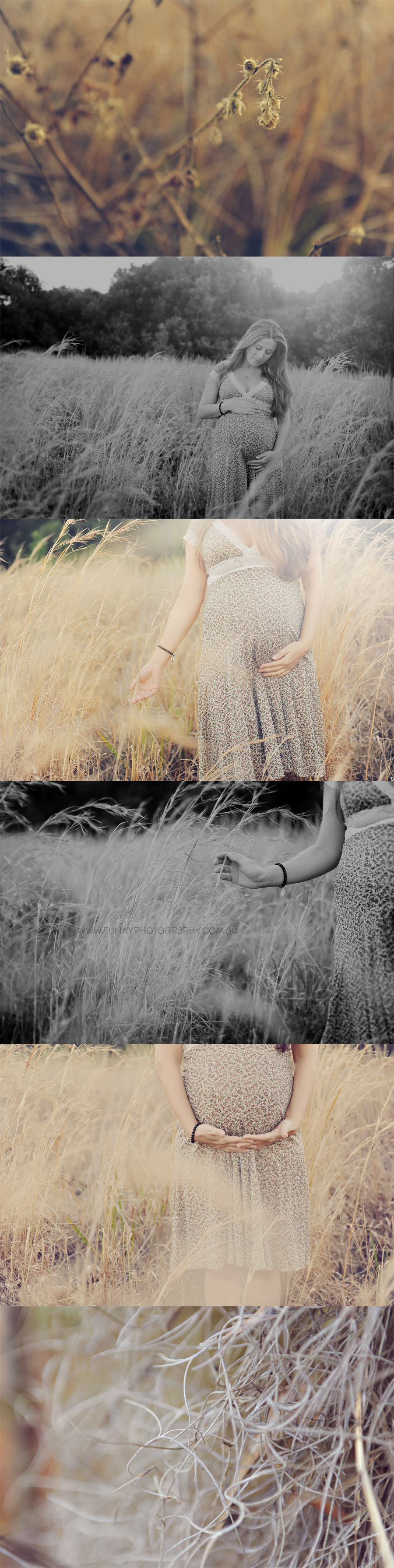 pregnant girl in a field